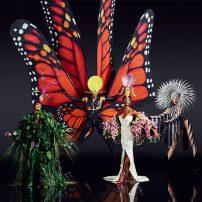 VIVID-Grand-Show_Butterfly_Composing_Foto-Robert-Grischek-541x541